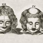 1665-Scultetus-28-copia-6