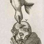 1665-Scultetus-29-copia-6