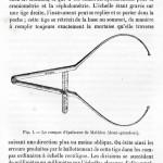 1875-Broca-01