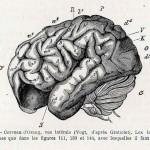1882-Charlton-Bastian-54