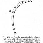 1904 MONOD 093