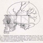 1908-Pat.-Chirurgica-02