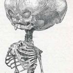 1908-Pat.-Chirurgica-19