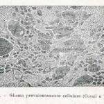 1908-Pat.-Chirurgica-25