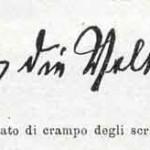 1914-Strumpell--030