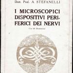 1922-Stefanelli-01
