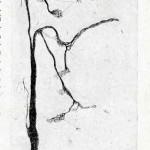 1922-Stefanelli-30