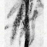 1922-Stefanelli-36