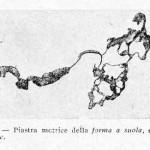 1922-Stefanelli-60