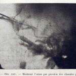 1924-Cushing-Harvey-19