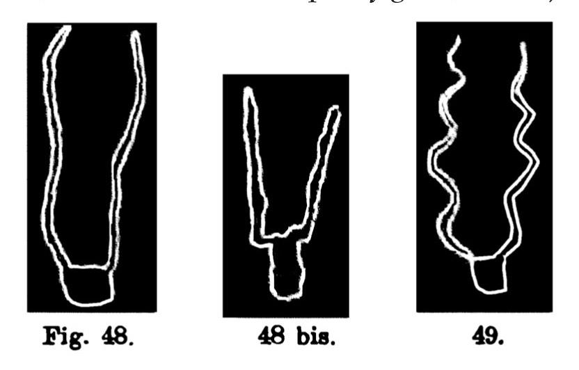 Fig. 48. Testa o teschio di capra. Fontanalba. Assai ridotta (Bicknell). Fig. 48 bis. Testa di capra. Fontanalba. Assai ridotta (Bicknell). Fig. 49. Testa o teschio di capra. Val d'Inferno. Assai ridotta (d'Albertis).