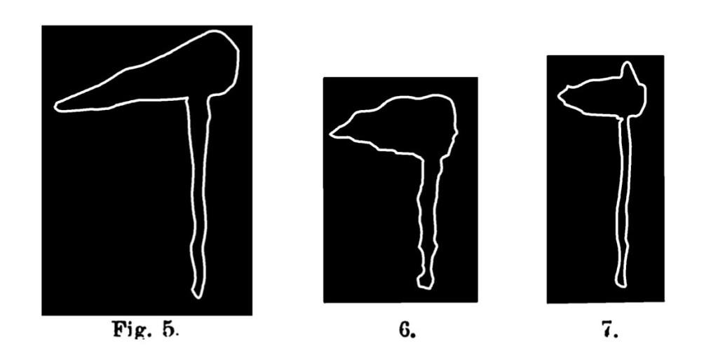 Fig. 5, 6 e 7. Mazzapicchio o zappa. Fontanalba. Assai ridotta.