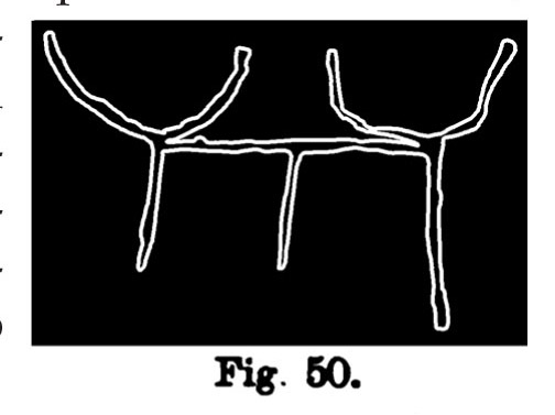 Fig. 50. Giogo con schemi di bovi. Fontanalba. Assai ridotta (Bicknell).