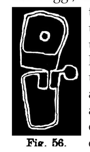 """Fig. 56. Pianta di """"margherita"""". Fontanalba. lunghezza dell'originale m. 030 (Bicknell)."""