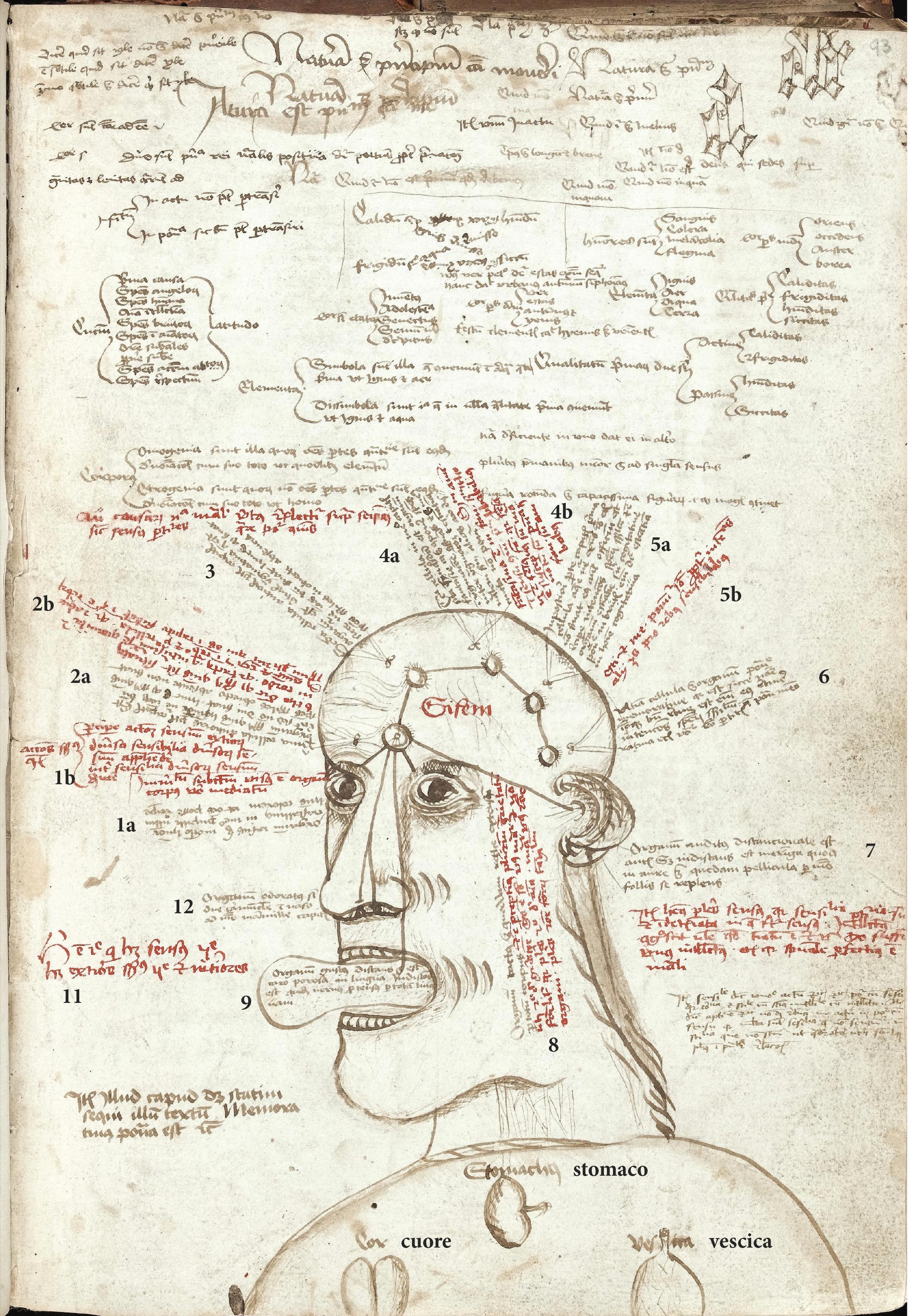 1 09a 2000 AF-1000 d C  Medici e Medicina, Cervello e